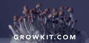 De perfecte growkit handleiding | McSmart